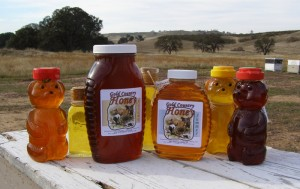 Gold Country Honey